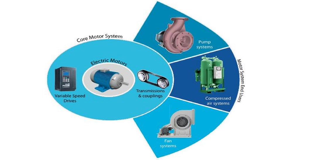 motor_systems